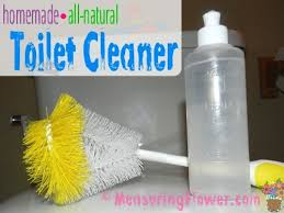homemade all natural toilet cleaner