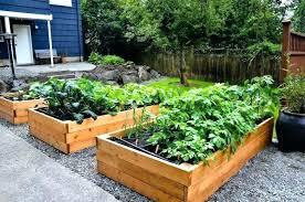 small raised vegetable garden layout