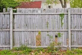 Just Screw Diy Rails To Standing Missing Sections Of Fence To Repair How Old Wood Fence Wood Fence Wooden Fence Old Fences