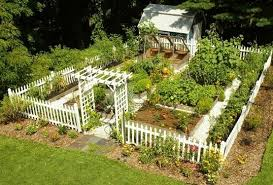example of picket fence around garden