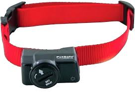Stubborn Dog Collar Ebay Petsafe Replacement Parts Mulleez Mobi
