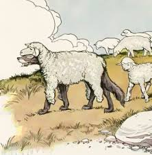 the wolf in sheep s clothing fables