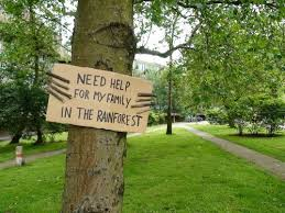 need help for my family in the rainforest com