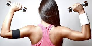 upper body dumbbell exercises biceps