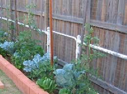 My Backyard Patch Garden Design Pictures Edible Garden Garden Design