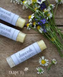 soothing chamomile lip balm with