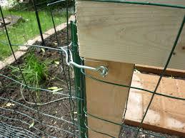 My Rabbit Proof Garden Gate Chicken Wire Fence Backyard Fences Fence Design