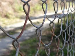 How To Hide An Ugly Fence Guide Pro Tips Ideas Install It Direct