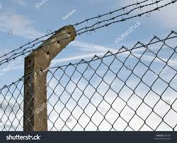 Fence Post Supporting Barbed Wire Mesh Stock Photo Edit Now 832804