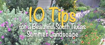 tips for a beautiful summer south texas