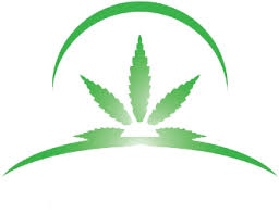 Buy Marijuana Online - Medical Marijuana Online | Rolloudbud.com