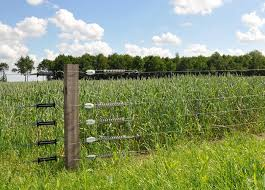 High Tensile Fencing For Sheep Gallagher
