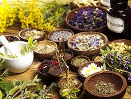 Top 10 Naturopathy Centers in India