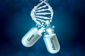 Panel Discussion - Key Considerations in Gene Therapy Manufacturing for  Commercialization - Please Submit Questions - Cell Culture Dish