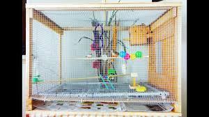 diy large bird cage small aviary 4