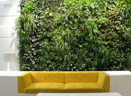 installing a vertical garden indoors