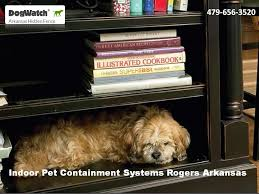Indoor Pet Containment Systems Rogers Arkansas Indoor Dog Fence Dog Fence Dogs