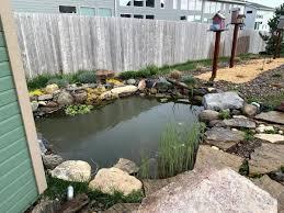 Could Should I Add A Bog Garden Pond Forums