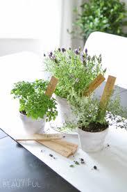 diy herb markers nick alicia