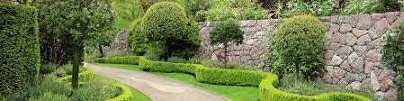 local landscaper landscaping
