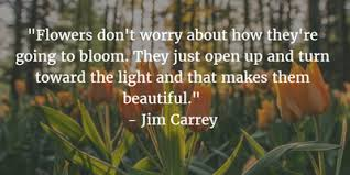 flowers blooming quotes that will make your day enkiquotes