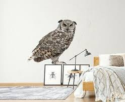 3d Grey Owl R18 Animal Wallpaper Mural Poster Wall Stickers Decal Zoe Ebay