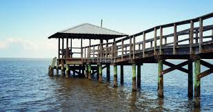 15 best things to do in fairhope alabama