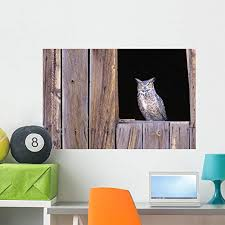 Amazon Com Wallmonkeys Great Horned Owl In Barn Window Wall Decal Peel And Stick Graphic Wm35009 36 In W X 24 In H Home Kitchen