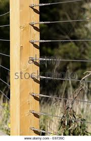 Wooden Fence Post With Tightly Tensioned Fence Wire Stock Image Wire Fence Wooden Posts Wooden Fence Posts