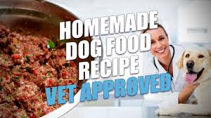 homemade dog food recipe vet approved