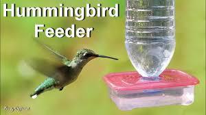 hummingbird feeder how to make a diy