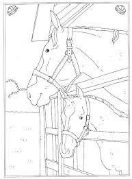 63 Kleurplaten Van Paarden Paarden Boek Bladzijden Kleuren