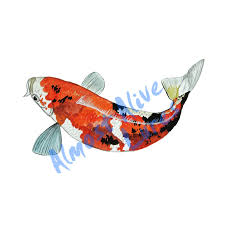 Koi Fish Printed Vinyl Decal Stk616l 8 99 Almost Alive Lures The Best There Ever Was