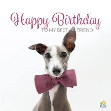 happy birthday best friend friends
