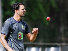 Mitchell Johnson named ICC Cricketer of the Year - The Economic Times