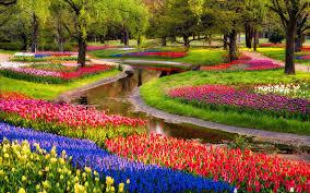 best 44 garden desktop backgrounds on