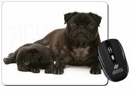 pug dog and puppy puter mouse mat