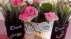 صباح الامل والمحبة اجمل كلمات عن الصباح دلع ورد
