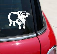 Braham Bull Cow Cattle Ranch Beef Graphic Decal Sticker Art Car Wall