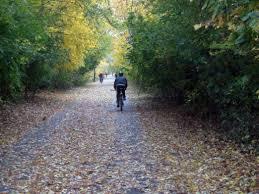 5 Must-Do Fall Bike Rides in Boston