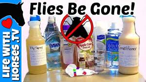 diy fly spray recipe how to make
