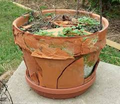 terracotta flower pots mosaic warning