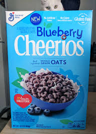 blueberry cheerios review general
