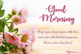 pink flowers good morning greeting