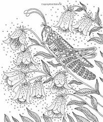 Pin Van Barbara Op Coloring Insect Kleurplaten Kleurboek En