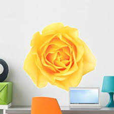 Amazon Com Wallmonkeys Yellow Rose Wall Decal Peel And Stick Floral Graphic 24 In W X 16 In H Wm25511 Furniture Decor