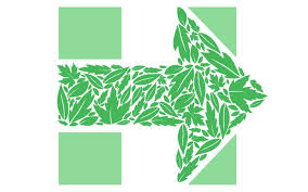 Hillary doubles down on climate change -- because the progressive base  demands it