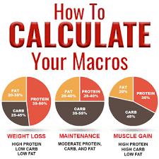 macro calculator find your macro
