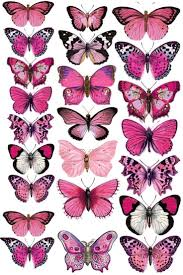 Pin by addie hansen on wall in 2020 | Butterfly drawing, Butterfly  wallpaper, Butterfly painting