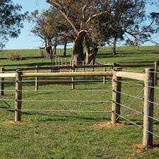 Electrobraid Electric Horse Fence Ramm Horse Fencing Stalls Horse Fencing Livestock Fence Pasture Fencing